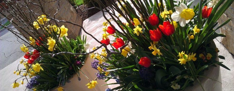 Gardening Workshops